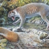 171207 7_marsupial_lion_illustration_by_peter_schouten_in_the_journal_of_systematic_palaeontology_1